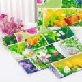 Первоцветы набор из 3 кухонных полотенец вид 4